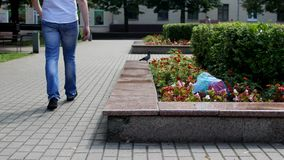 A man in the city is walking and throwing out a package of garbage on a flower bed, garbage in the city, a problem. City and garbage stock video