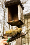 Man is cleaning a birdhouse Royalty Free Stock Images