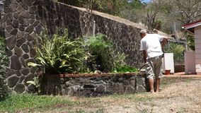 A man cleaning a fish pond in the tropics. A homeowner scooping muck from a pool in the windward islands stock video footage