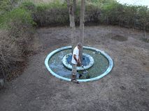 A man cleaning a fish pond in the tropics stock video