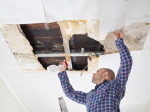 Man cleaning mold on ceiling. Stock Photo