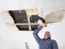 Man cleaning mold on ceiling. Stock Images