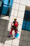 Man Cleaning Office Building Hanging On Ropes Stock Images