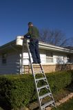 Man Cleaning Rain Gutters, Inspecting House Roof. Man performing home maintenance, inspecting house roof and cleaning rain gutters while up on a ladder Royalty Free Stock Photo
