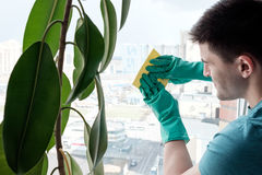 Man cleaning window Royalty Free Stock Image