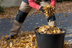 Man cleanning the driveway Royalty Free Stock Photography