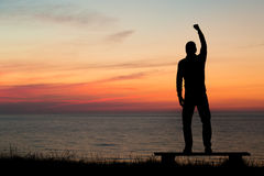 Man with clenched fist Stock Images