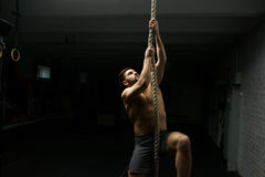 Man climbs ropa at gym Royalty Free Stock Images