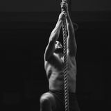Man climbs ropa at gym Stock Photography