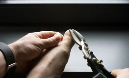 Clipping toenails with sheet metal shears royalty free stock images