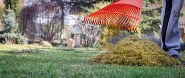 A man clogs the felt with a lawn with red plastic rags, after aeration.  royalty free stock photography