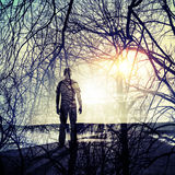 Man is on the coast, shining sun and tree  branches pattern Royalty Free Stock Photography