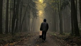 Man in coat with old suitcase in a foggy autumn forest stock footage