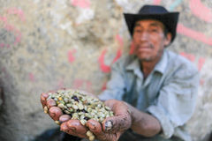 A man with coffee beans Royalty Free Stock Photo