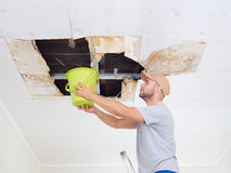 Man Collecting Water In Bucket From Ceiling. Ceiling panels dama Stock Images