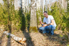 Man collects birch sap Stock Photography