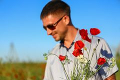 A man collects a bouquet of poppies in the field, soft focus on a bouquet of flowers stock images