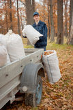 A man collects in a grove of leaves Royalty Free Stock Images