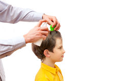 A man is combing out nits from boy's head. Isolated on white background stock photography