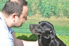 Man communicating with a black dog. Man communicating with his best friend - black dog Royalty Free Stock Image