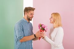 Man congratulates woman birthday anniversary holiday, pastel background. Gift concept. Man gives bouquet flowers to royalty free stock image