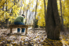Man Contemplates Life Issues On a Bench In Fall Fo stock photos
