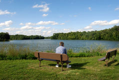 Man Contemplating at Park. Man sitting in beautiful scene with a lake Stock Photography