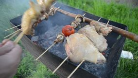 A Man Cook Barbecue stock video footage