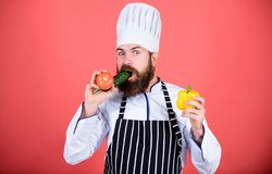 Man cook hat apron hold fresh vegetables. Vegetarian recipe concept. Buy fresh vegetables grocery store. Vegetarian. Restaurant. Hipster chief chef vegetarian stock image