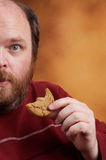Man with Cookie. Overweight middle aged man with cookies Stock Photography