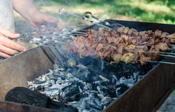 Man cooking marinated shashlik or shish kebab, chiken meat grilling on metal skewer, close up. Selective focus Stock Images