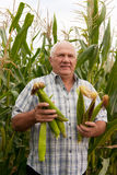 Man with corn Royalty Free Stock Photography