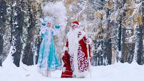Man in costume of Father Frost and woman in costume of Snowflake having fun in forest. Of frosty winter. Slow motion stock video footage