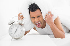 Man covering ears with pillow and shouting with alarm clock in foreground Royalty Free Stock Photo