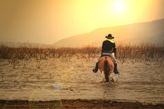A man in cowboy costume on his horse in a corner against the sun against a background with rivers and mountains