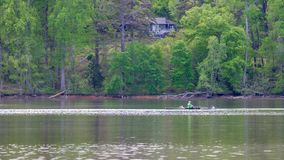 Man in crew boat on lake rowing with trees in the background royalty free stock photos