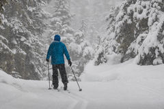 Man cross-country skiing in a snowstorm Stock Photos