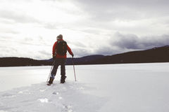 Man in cross country skis  Stock Photography