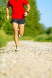 Man cross country trail running Royalty Free Stock Image