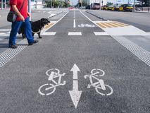 Man crossing street with dog Disability pedestrian ground with Bike lane urban Traffic signage royalty free stock photos