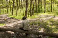 Man at  the crossroads. Adult male sitting on a fallen  tree  at crossroads in the forest Royalty Free Stock Photos