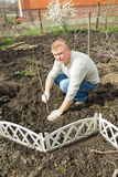 Man cultivates raspberry seedlings. The man cultivates raspberry seedlings in spring Royalty Free Stock Image