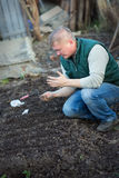 Man cultivates the seeds of radish. In the garden Royalty Free Stock Images