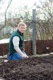 Man cultivates the seeds of radish. In the garden Royalty Free Stock Image