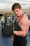 Man Curling Dumbbell at Gym Stock Photo