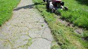 Man cut grass stone path Royalty Free Stock Photo