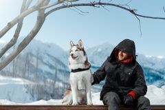 Man and Cute Siberian Husky dog sitting on bench highly in mountains stock photos