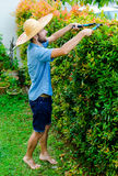 Man cuts bushes. With clippers near the house Stock Photo