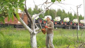 A man cuts off branches on a tree that is withered. In the background, there is a train that transports the tractor. A man cuts a chain saw tree near his house stock video