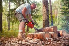 Man cuts firewood logs with chainsaw in a summer forest. Person uses portable petrol chainsaw to cut firewood logs in a summer forest camping royalty free stock images